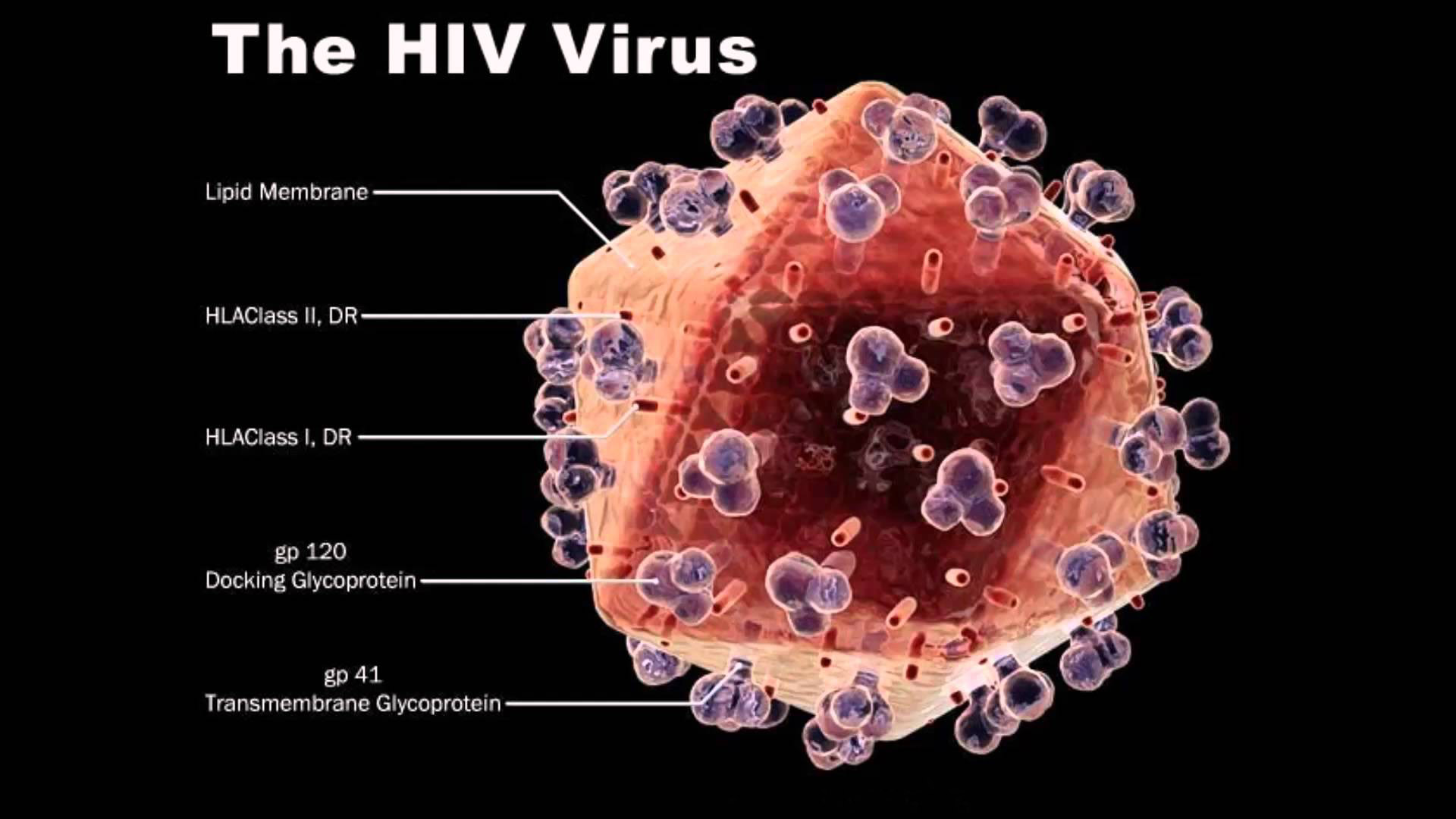 HIV Treatment Hospital in Pune